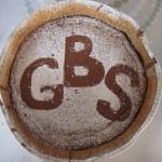 GBS vårfest 130608 072