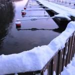 Snön ligger vit i hamnen