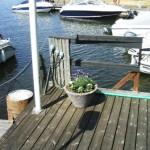 hamnen090524_1