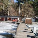 hamnen20120302