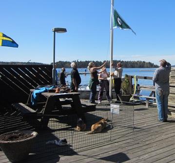 Hamnen2014-04-26 015