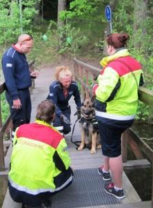 Även sjöräddningshundar måste kissa i land!