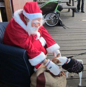 Lilla Tilda, man får inte välja julklapp!